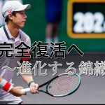 【テニス分析】錦織圭の新スタイルを徹底分析! 目指すはフェデラー!?