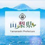 東京2020オリンピック聖火リレー山梨県セレブレーションDAY2