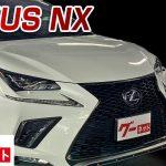 【レクサス NX】10系 NX300h Fスポーツ グーネット動画カタログ_内装からオプションまで徹底解説