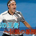 【テニス戦術】絶対王者の帰還!錦織圭との死闘に刮目せよ! フェデラーvs錦織圭 全豪オープン2017 Part2