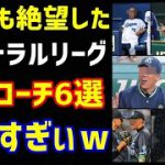 【プロ野球】ファンも絶望したセ・リーグ駄目コーチ6選…ヤバすぎぃ!(ノ・ボールガールの野球NEWS)