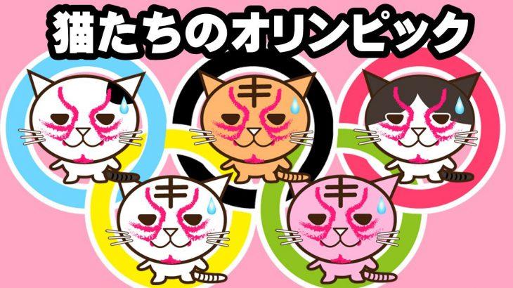 猫たちのオリンピック