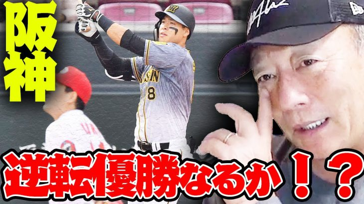 【大接戦‼︎】ヤクルト・阪神・ロッテ・オリックス大混戦の優勝争いについて語ります【プロ野球ニュース】